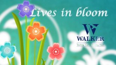 The Walker School – Lives in Bloom